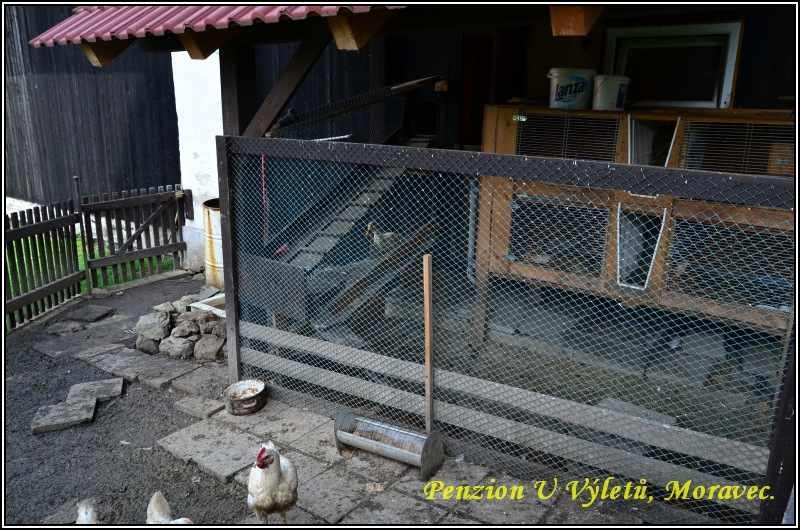 mini-zoo-penzion-u-vyletu-8
