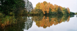 Okolí Moravce